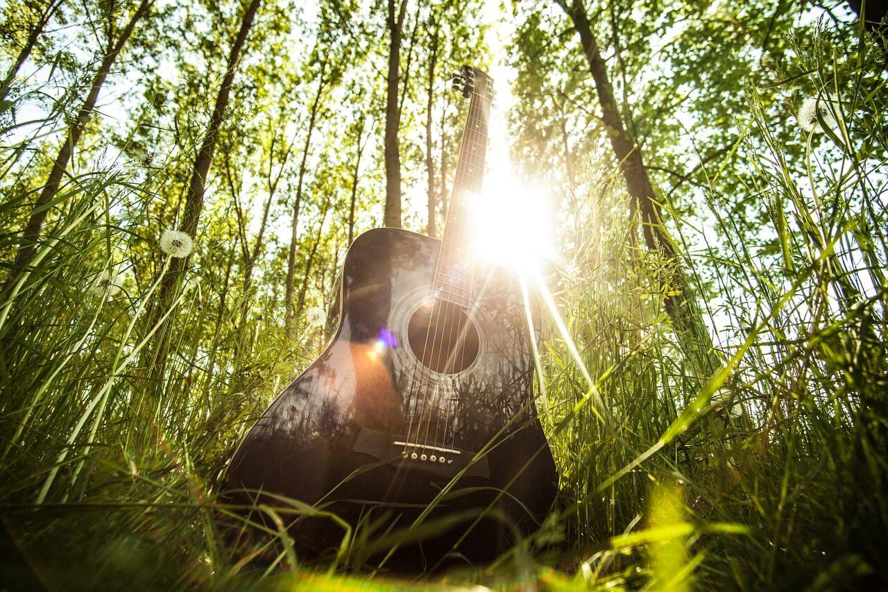 acoustic-guitar-407214_1280.jpg