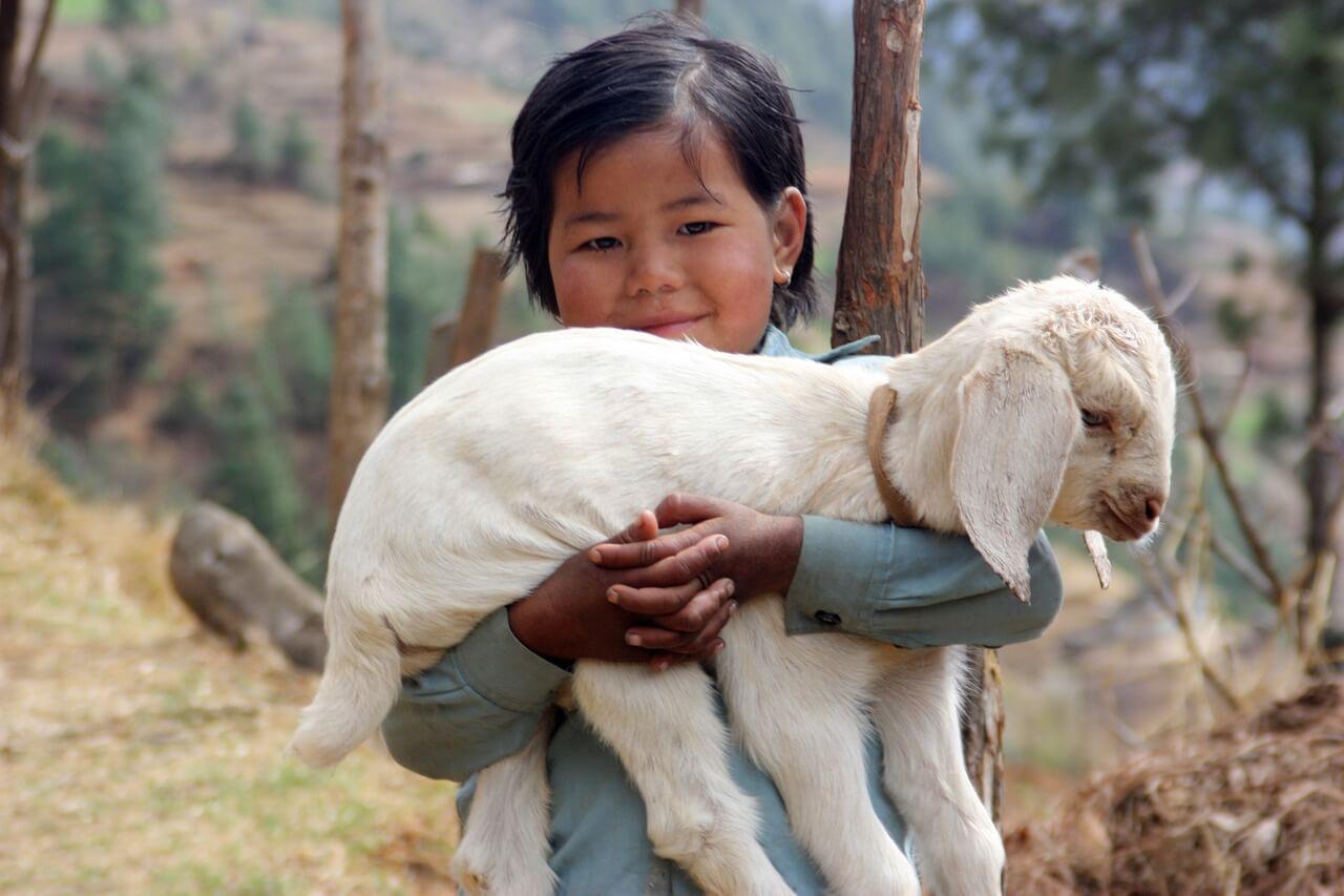 nepal-1504853_1280.jpg