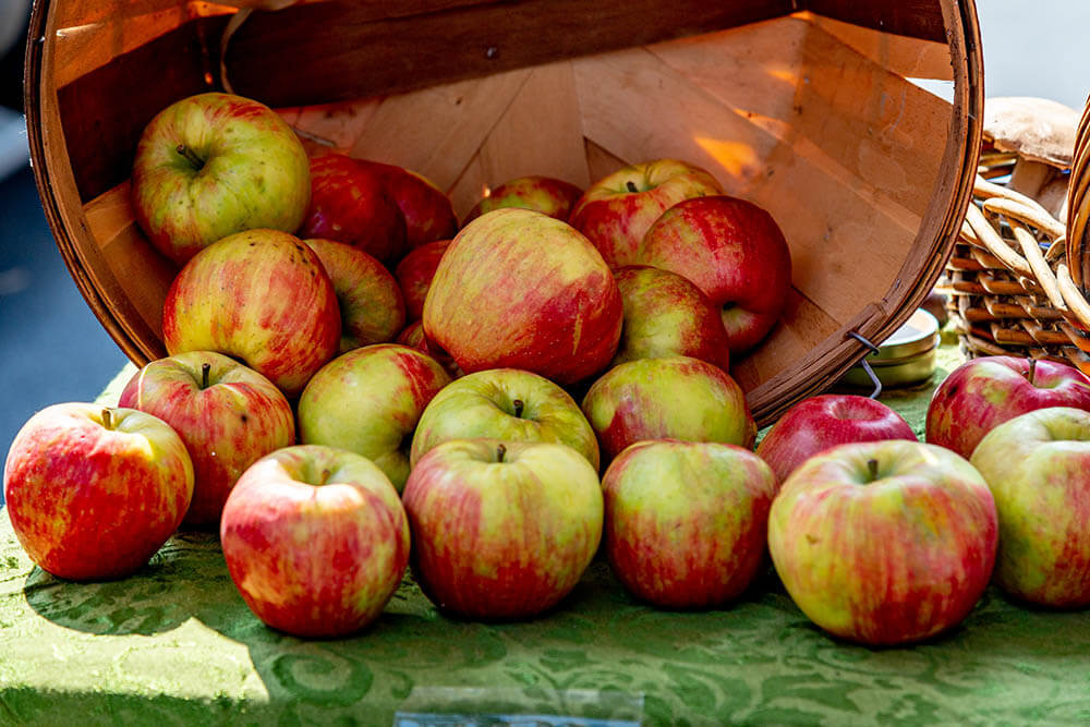 A recipe for apple pie